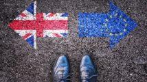 'Short' Brexit transition concerns adviser body